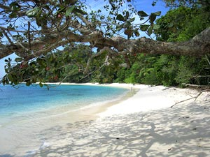 Havelock Island, Indian Islands