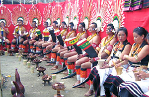 Hornbill festival by every Naga tribe