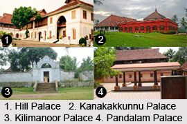 Palaces in Kerala, Indian Monuments