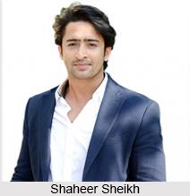 Shaheer Sheikh, Indian TV Actor