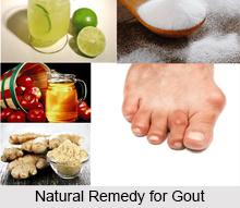 Natural Gout Treatment Reviews
