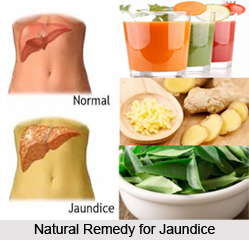 Natural Remedy For Uti Pseudomonas Aeruginosa