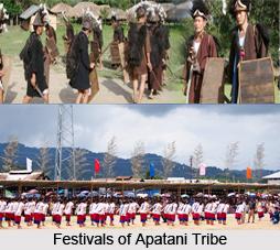 Apatani Tribe, Arunachal Pradesh