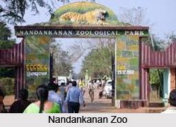 Elephant Jungle Tours Thailand
