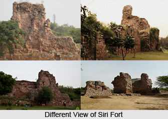 Siri Fort, Delhi
