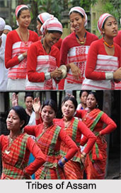 Tribes of Assam