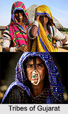 Tribes of Gujarat