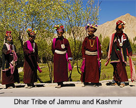 Tribes of Jammu and Kashmir