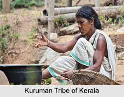 Tribes of Kerela