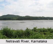 Netravati River, Karnataka