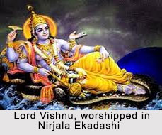 Nirjala Ekadashi, Indian Festival