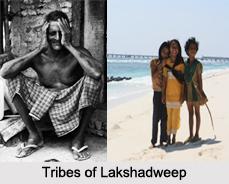 Tribes of Lakshadweep