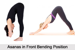 Asanas in Bending Position, Yoga Asanas
