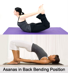 Asanas in Bending Position, Yoga Asanas