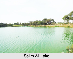 salim ali lake This unique, half-saltwater, half-freshwater lake in odisha is 70 km in  the story  of nandakishore is very similar to the story of dr salim ali.