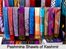 Costumes of Jammu and Kashmir