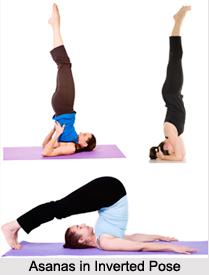 Asanas in Inverted Pose, Yoga Asanas