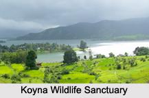 Wildlife Sanctuaries of Maharashtra