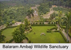 Wildlife Sanctuaries of Gujarat
