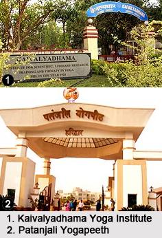 Yoga Institutes in India