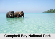 National Parks of Andaman and Nicobar Islands