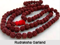 Rudraksha, Astrology