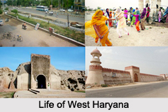 Districts of West Haryana