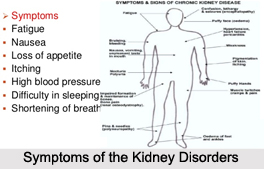 Symptoms of the Kidney Disorders, Naturopathy