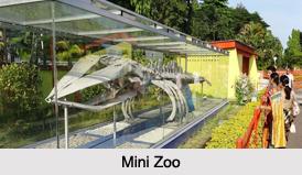 Zoo of Andaman and Nicobar Islands