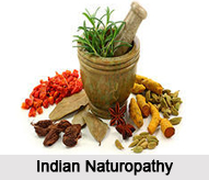 Indian Naturopathy
