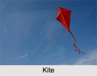 Kite flying in India, Indian Traditional Sport