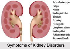 Kidney Disorders, Naturopathy