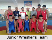 Wrestling in India, Indian Traditional Sport