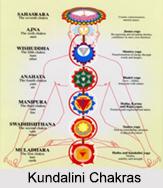 Kundalini Chakras, Yoga