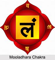 Mooladhara Chakra, Kundalini Chakra