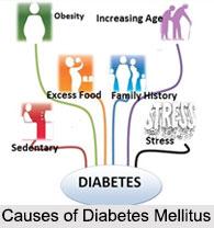 Diabetes Mellitus, Blood Related Ailment