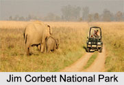 National Parks of North India
