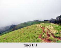 Shirui Lily, Indian Flower