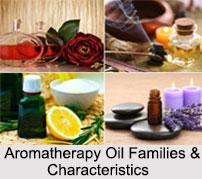 Aromatherapy Oil Families & Characteristics, Aromatherapy