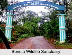 Indian Wildlife Sanctuaries