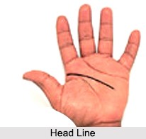Lines of Hand, Palmistry