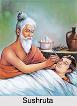 Sushruta Samhita, Ayurveda