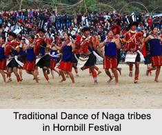 Naga Tribes, Indian Tribals