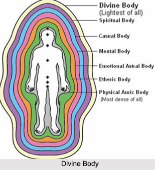 Divine Body, Bodies and Chakras