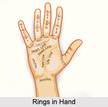 Rings in Hand, Palmistry
