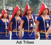 Adi Tribe, Tribes of Arunachal Pradesh