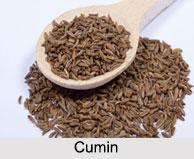 Cumin, Types of Spice