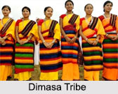 Dimasa Tribes, Tribes of Assam