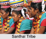 Santhal Tribe, Tribes of Jharkhand