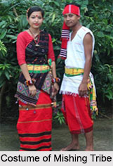 Mishing Tribes, Tribes of Assam